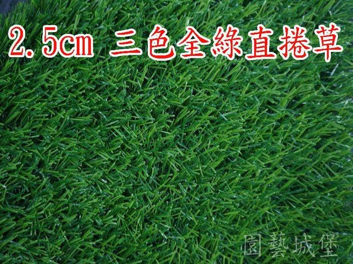 """【園藝城堡】人工草皮~草高2.5cm(寬100cm) 每單位長30cm """"零售"""" 三色全綠直捲草 塑膠草皮 人造草皮"""