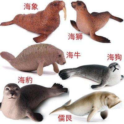 溜溜海洋動物生物模型擺件海豹海狗海獅海象海牛河貍水獺儒艮仿真玩具