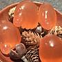 金田黃,芙蓉石,黃龍玉,和田玉,紅凍石腳丫掛件,金石篆刻