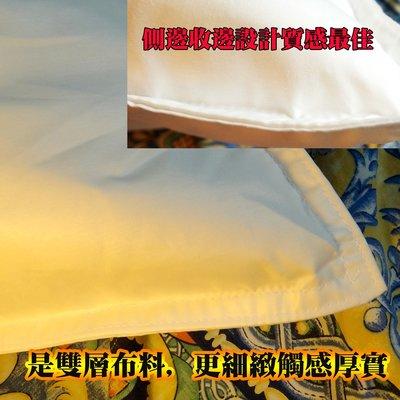 羽絨枕 羽毛枕支撐枕 美國杜邦枕 超好睡   彈性佳 天然水鳥羽毛 抗菌表布  五星級飯店特製訂製品 合購省運費~快樂行