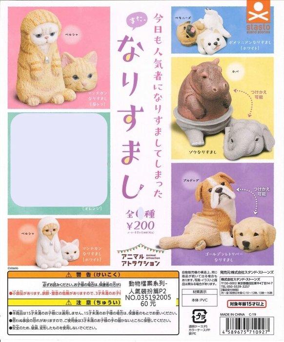【扭蛋屋】動物檔案系列-人氣裝扮篇P2《全5款》