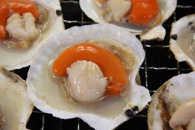 【中秋烤肉食材】來點新鮮的~扇貝(半殼)約9-11粒/約500g~新鮮的滋味~只有自己能體會~