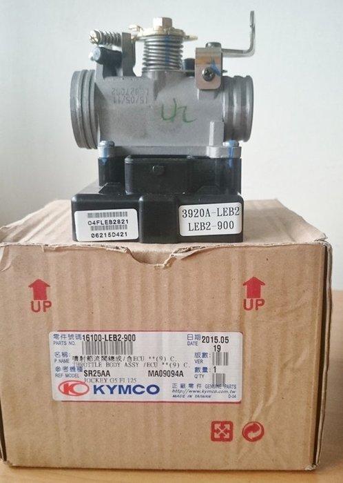 【二輪部品】光陽 原廠電腦 西門子 節流閥總成 ECU G5 125用 3920A-LEB2 LEB2-900