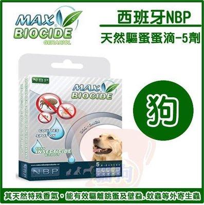 **貓狗大王**純天然NBP犬用除蚤防蚤驅蝨滴劑-5入(除了蚤 不到 蚤 安 寵愛 益百分另一個選擇)