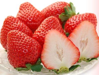 """""""草莓一族""""日本草莓種子/日本熊本ひのしずく草莓王/10粒入種子"""