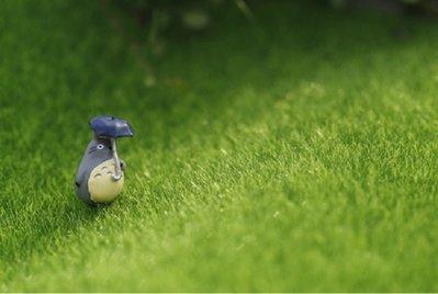 超大號【NF310】景觀草皮 模擬假苔蘚 草皮 草坪園藝微景觀 仙人掌景觀盆栽 庭院擺飾 攝影道具 組盆公仔 zakka
