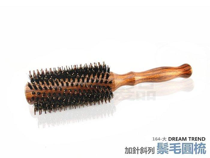 【DT髮品】專業級 Q派 純鬃毛加針斜列圓梳 (大) 豬鬃毛 台灣製造 另售 按摩梳 尖尾梳【0313112】