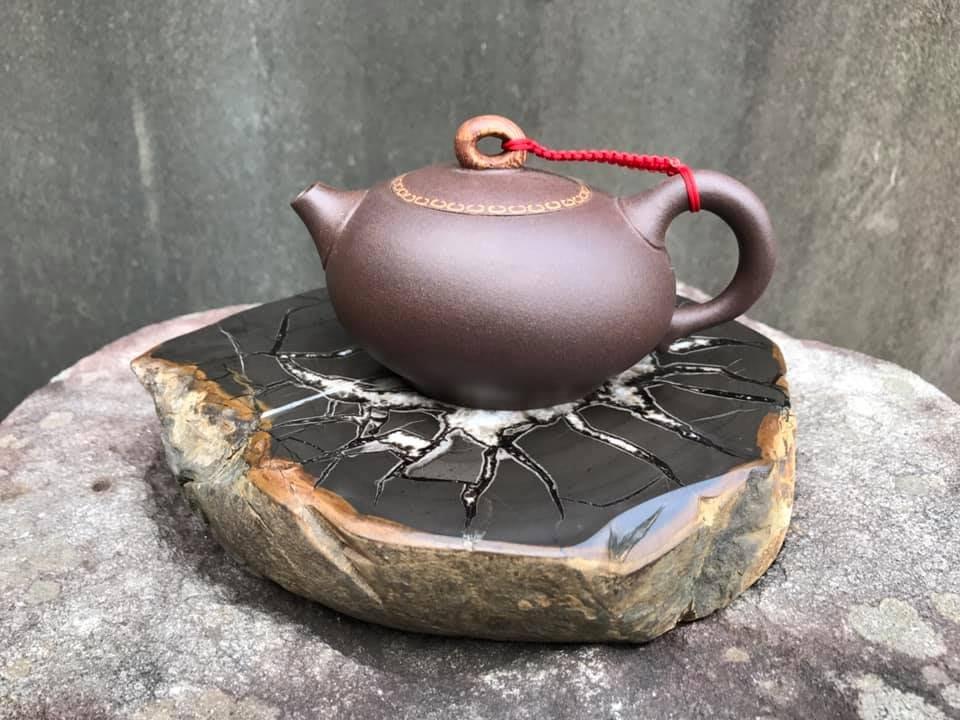 ~春秋盆栽~ 高級收藏品 滿花龜甲石杯墊(J017)