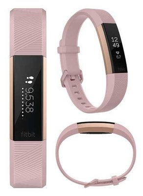 New Revolution Shop Fitbit Alta HR (Large, Small)