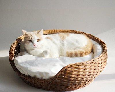 家裡的小怪獸   CATSCITY純手工真藤編織超大碗型貓窩日系貓窩四季通用貓床送墊子