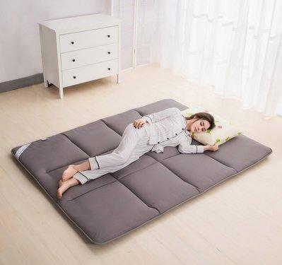 床墊    席夢思防滑床護墊   居家旅行磨毛床墊 四季適用