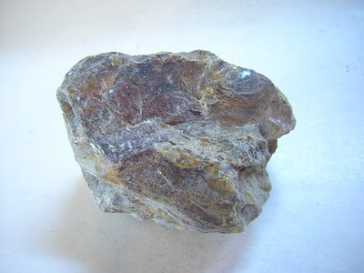 【尋寶坊】天然血珀原礦~22g《低起標.無底價》隨身把玩品~另有琥珀原礦.藍珀原礦