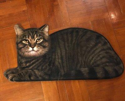 可愛 3D 狸花猫 客廳 卧室 小地毯 門墊 (小號有一張現貨)
