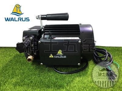 【紳士五金】❤熱銷家用款❤ TH-250P 大井泵浦 1/3HP噴霧機 可用於洗車 管路試壓抓漏 含配件