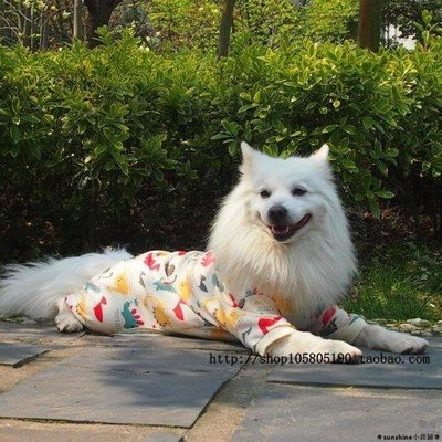 ❆sunshine小商鋪❆中型犬大型犬寵物四腳衣大狗T恤衫春夏款狗狗衣服