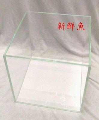 ~新鮮魚水族館~實體店面 超白 玻璃缸 40 立方缸 40*40*40cm