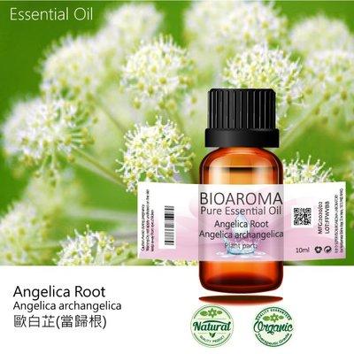 【純露工坊】歐白芷(當歸根)精油Angelica Root - Angelica archangelica 10ml