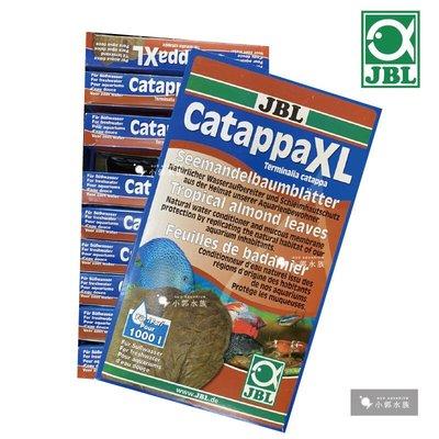 小郭水族-德國JBL【雨林欖仁葉catappa XL 10片/盒】黑水 自然水質調理劑 可參考