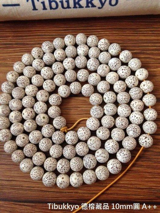 Tibukkyo 現貨供應 星月菩提 10mm 圓珠 A++ 海南元寶籽 高密正月 乾磨 108顆 海南籽
