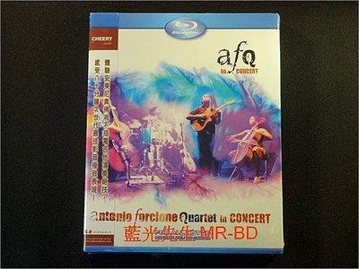 [藍光BD] - 安東尼奧佛湘四重奏不插電演奏會 Antonio Forcione Quartet in Concert ( 台灣正版 )