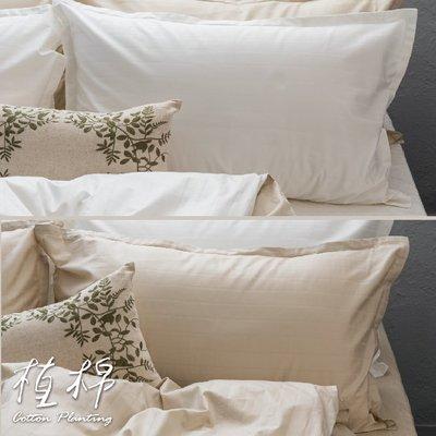 《50支紗》歐式壓框枕套二入【共2色】植棉-白、米 100%精梳棉-麗塔寢飾-