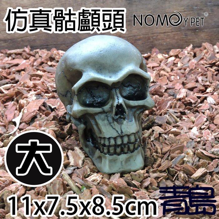 Y。。。青島水族。。。NS-102中國NOMO諾摩-逼真骷髏頭 人頭骨頭 骷顱頭 水族裝飾 躲藏 造景蜘蛛蠍蛇蜥蜴==大