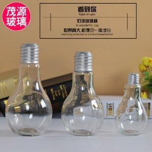 M172-1---燈泡花器*玻璃**花器 (花瓶)有現貨