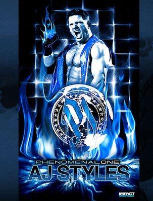 ☆阿Su倉庫☆WWE摔角 TNA巨星 AJ Styles Banner AJ巨幅旗幟造型款海報 熱賣特價中