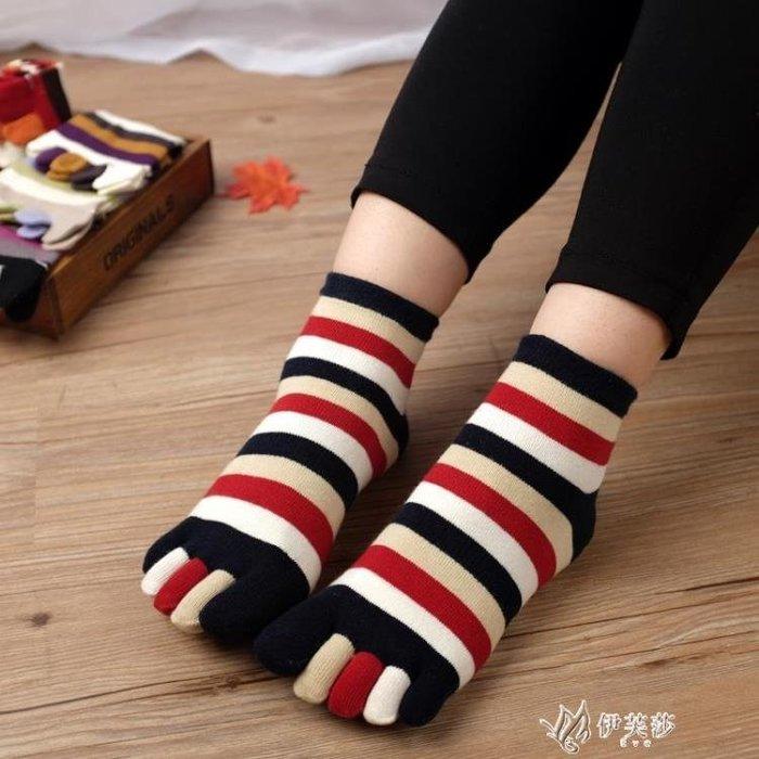 五子襪全棉組合禮盒裝 秋冬五指襪女士純棉五趾襪子透氣短筒女襪子