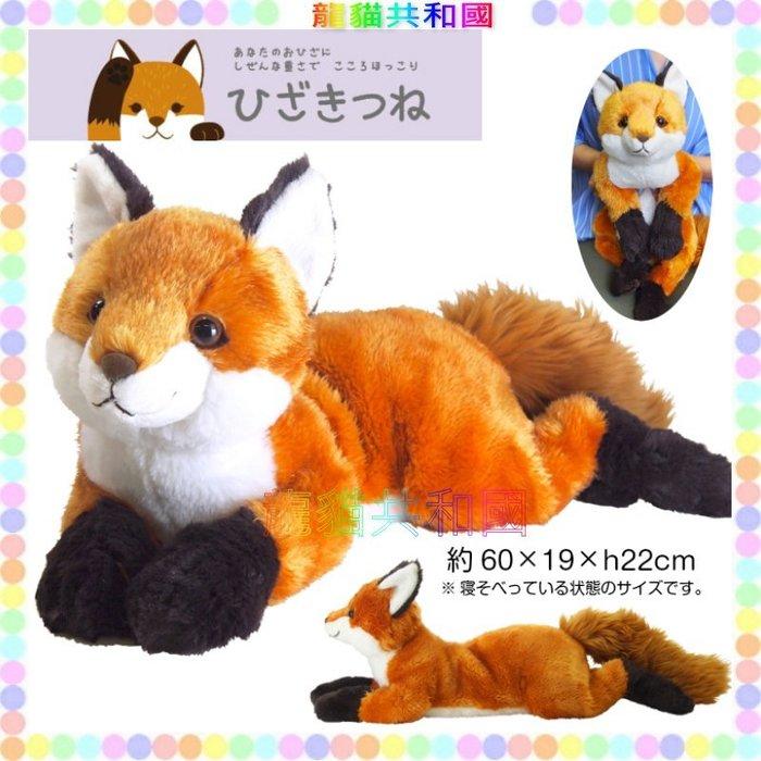 ※龍貓共和國※日本正版《SUNLEMON超療癒 仿真擬真 可愛寵物肉球 黃狐狸 絨毛娃娃 玩偶M號60公分》