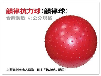 顆粒/平面 韻律抗力球(韻律球)工廠直營 台灣製造 65公分規格【1313健康館】