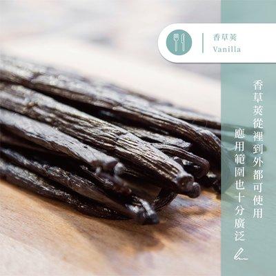 【味旅嚴選】|香草莢|Vanilla |約17cm
