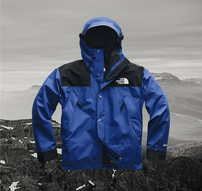 The north face Gore tex 連帽外套