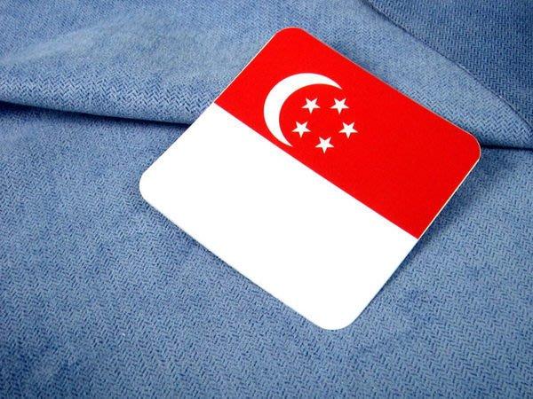 【國旗貼紙專賣店】新加坡方形登機行李箱貼紙/抗UV防水/旅行箱/多國可收集訂製