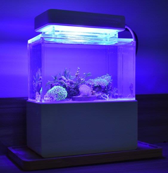 【新奇屋】USB微型魚缸 寸澤微缸辦公室迷你療癒魚缸 宿舍桌面小缸 淡海水族箱過濾生態缸 生日禮物(海水珊瑚缸紫藍燈款)