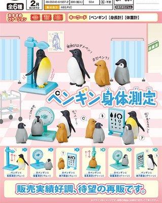 現貨  日本正版 epoch 企鵝身體檢查 稱重 扭蛋 模型