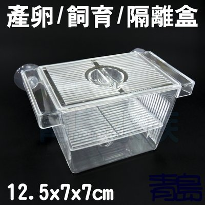 Y。。。青島水族。。。F-177-S佳力仕  ALEAS 金利佳 雅柏 XL 鐳力 水世界-產卵盒 飼育盒 隔離盒=S