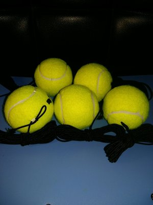 網球 訓練球 TENNIS TRAINING BALLS