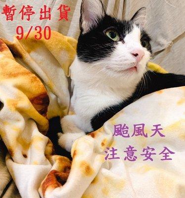 【台北周先生】米塔颱風來襲,9/30(一)台北市停班停課,暫停出貨及客服公告!