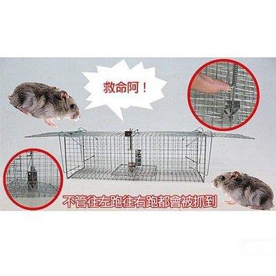 名佳生活百貨 - 總捉踏式捕鼠籠 S40 捕鼠瓶 捕鼠器 鼠籠 捕貓 補狸籠 捕蛇籠