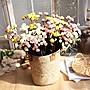 瓜喵大王- - 仿真小玫瑰花束 PE植物客廳茶幾餐...