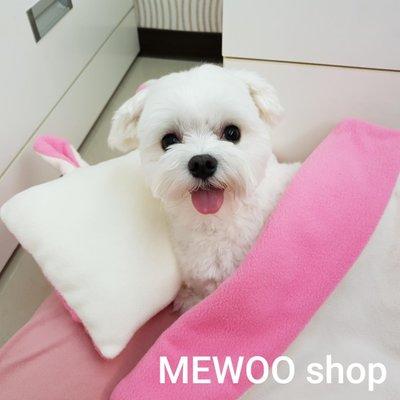 【兔兔枕+被】寵物寢具組