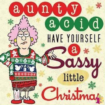 [文閲原版]酸姨有時髦的圣誕衣 英文原版 Aunty Acids have yourself a sassy litt