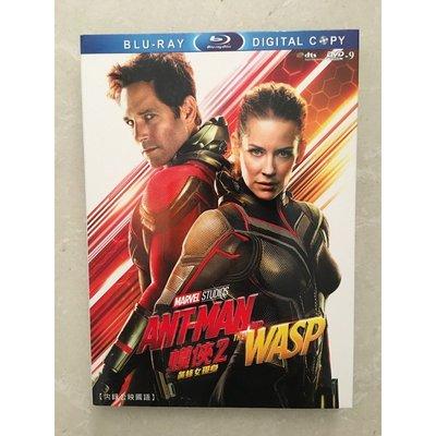 【博鑫音像】電影 蟻人2:黃蜂女現身/蟻俠2:黃蜂女現身/蟻人與黃蜂女 DVD 高清 全新盒裝@WC