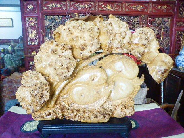 收藏級~珍貴樹種~黃金樟樹瘤~荷葉蓮花金魚~代表:連連發大財~富貴有餘! 自取優惠特價:15000元!