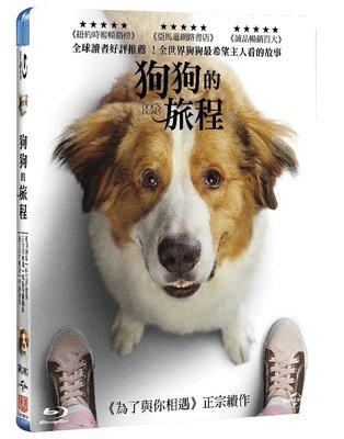 <<影音風暴>>(藍光電影1909)狗狗的旅程  藍光 BD  全108分鐘(下標即賣)48