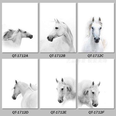 三幅一組油畫布 北歐白馬動物駿馬圖 畫芯/畫布/30X40☺暖暖屋☺傢居藝術館