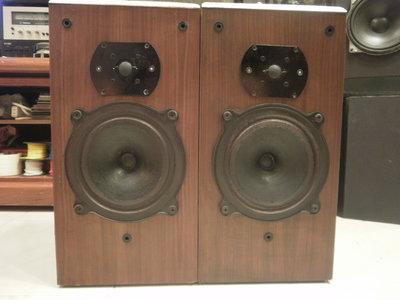 (老高音箱)完整稀有 B&W DM22 老喇叭完整一對