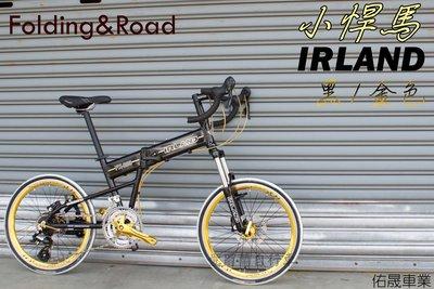 【愛爾蘭自行車】公路車 彎把 碟剎 折疊車 小悍馬 451刀圈 24速 鋁合金材質 IRLAND 前後快拆 剎變一體
