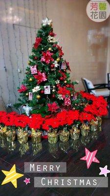 【☆芳馨花園☆】~人造花~7花絨布聖誕紅盆栽(大紅)[D1012]~店面擺設,社區佈置等